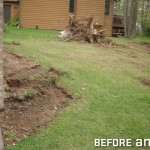 Removal of Stumps During Early Phase of Project
